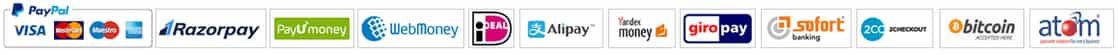 We accept PayPal, 2Checkout, SOFORT Banking, Giropay, WebMoney, Yandex.Money, Alipay, iDeal, PayUmoney, Atom, All Major Credit Cards and BitCoin.